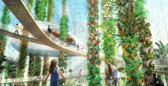 AECOM, urban food jungle, aquaponics, urban jungle, farm to table, sustainable design, sustainable food, green food production, eco-design, green building