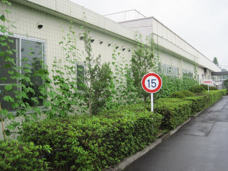 Kyocera Cools Buildings with Luscious, Edible Green Curtains