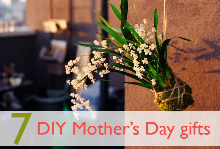 7 delightful diy mothers day gifts to make for your mum inhabitat innovation solutioingenieria Gallery
