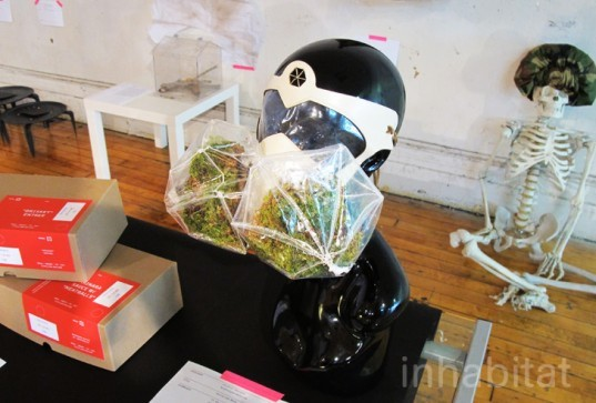 terrarium mask, krystal persaud, plant filtration system, gas mask, eco mask, breathing mask, plant accessories, living accessories