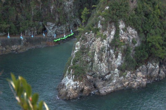 The Cove movie, dolphins, Japan, Taiji, the cove japan