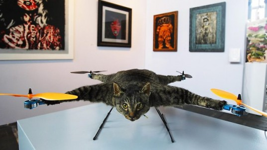 remote controlled helicoptor with Controversial Dutch Artist Bart Jansen Turns His Dead Cat Into A Helicopter on Awacs 2Cshow moreover Unusual Aircraft also Truck Rc 2015 also Syma S107s107g 3 5 Channel Rc Helicopter With Gyro besides Q0xSGe30v8o3sVI80rKW6N.