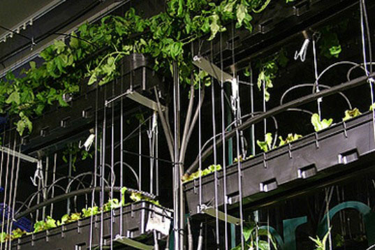 urban agriculture curtain, Bohn and Viljoen, indoor gardening, urban farming, vertical garden, fresh produce, green design, sustainable design, eco planting, hydroponics