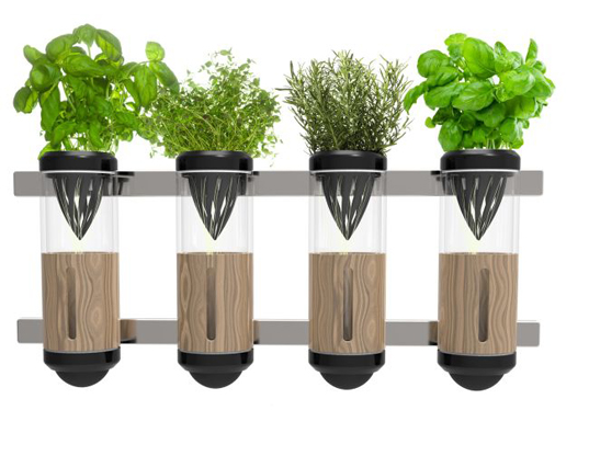 1000 images about projet green on pinterest for Indoor gardening gadgets