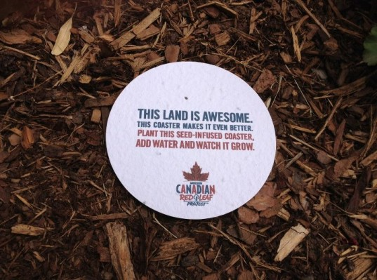 beer brand, black spruce tree, Coasters, eco-friendly, molson canadian, plantable coaster, red leaf project, seed-infused coaster