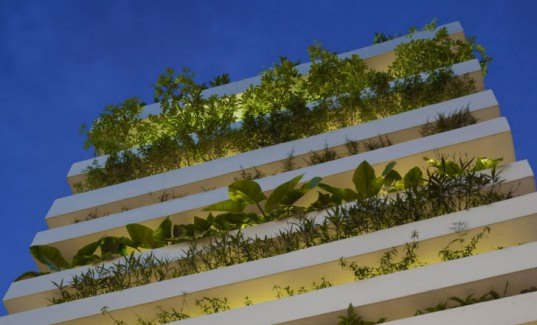 eco home, green wall, natural cooling, Vietnam daylighitng, urban home design,