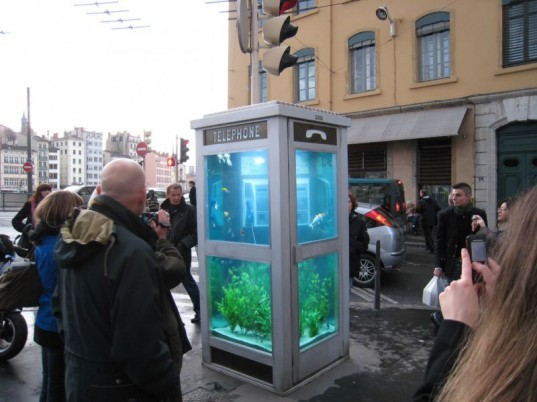 environment,design,culture,fish,food,art,climate change,recycle,cities,light,france,reuse,aquarium,cellphone,image of the day,benoit deseille,benedetto bufalino,festival of light,lyon,phone booth,good pets