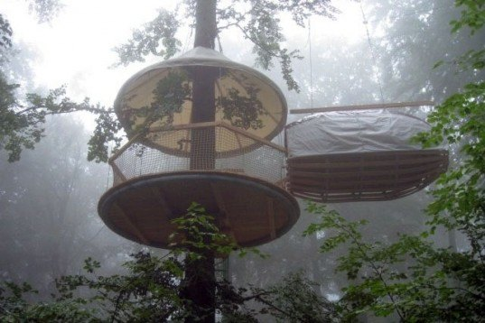 Erlebnest, Treehouse, Germany, Cambium, tree houses, cocoon, Bingen on the Rhine