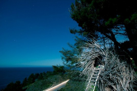 Spirt Nest, human nest, nest, Jayson Fann, Big Sur, Pacific Ocean, California, natural materials, local materials, sustainable materials, treehouse, green design, sustainable design, eco-design, nature