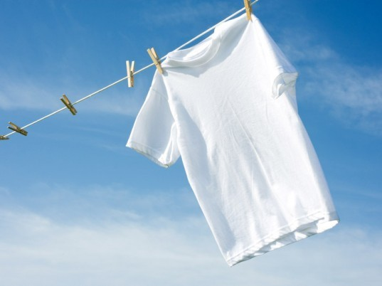 T-shirt, clothesline, clothes line, cotton t-shirt, white t-shirt
