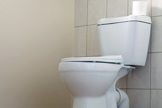 toilet, low flow toilet, green toilet, low water toilet, efficient toilet