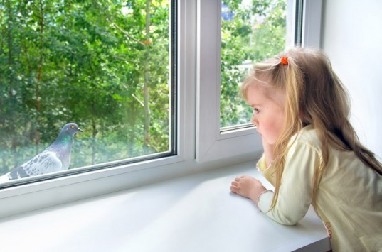 change your windows, insulating windows, efficient windows, girl at window