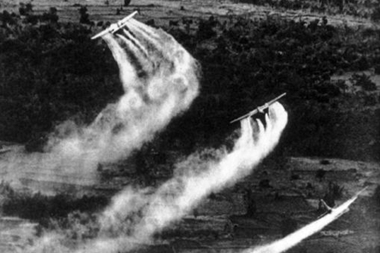 Agent Orange clean-up, toxic chemicals, bio-weapon, vietnam war, us initiative, herbicides