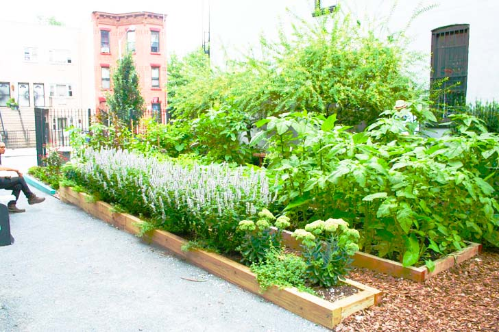 Bushwick's Cooper Street Garden Reopens as an Eco-Friendly Community on home space, garage space, living room space, community pool, community work space, art gallery space, cricut design space, community diy space, community park space,