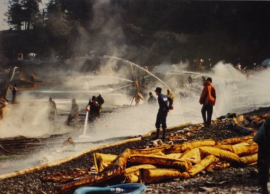 exxon valdez, exxon valdez oil spill, gulf of mexico oil spill, deep horizon oil spill, ship breaking, metal recycling, oil spill, toxic spill, Indian ship-breaking yard, alang,