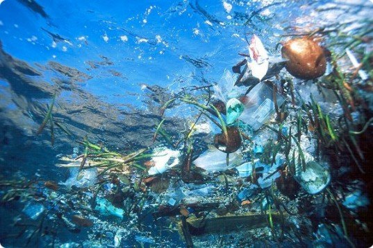 Plastic Garbage, Underwater, Great Pacific Garbage Patch