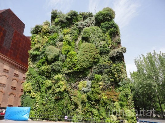 green design, eco design, sustainable design, Madrid, Caiza Forum, living wall, Patrick Blanc, Vertical Garden, self irrigating green wall