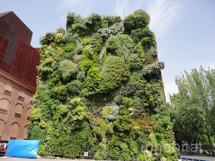 Patrick Blanc'S Lush Vertical Garden Is A Green Oasis In The