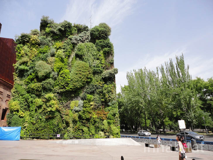 Vertical Living Wall Patrick Blancu0027s Lush Vertical Garden is a Green Oasis in the Middle of  Madrid