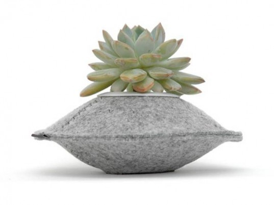 Lovely Flip U0026 Tumble, Felt Pods, Planter, Reycled, Saucer, Plants, Indoor Great Ideas