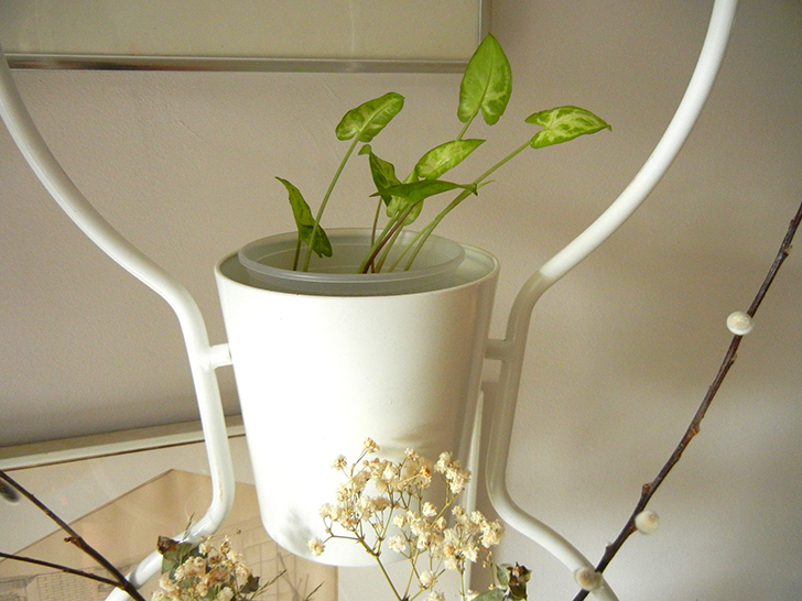 diy how to make your own vertical garden room divider using inexpensive ikea plant stands. Black Bedroom Furniture Sets. Home Design Ideas