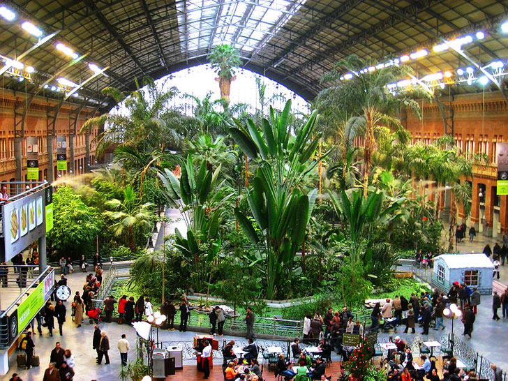 Madrids atocha station doubles as an indoor botanical garden and architecture workwithnaturefo