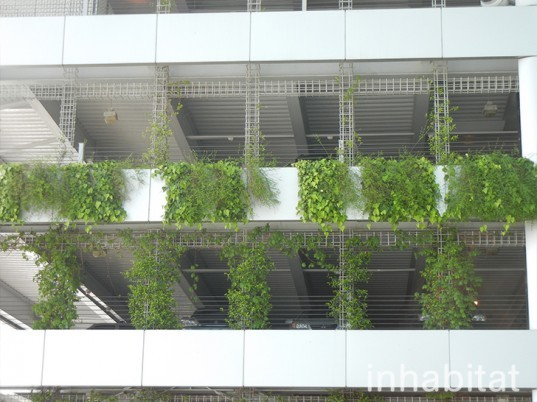 green wall, vertical wall, pdx, green wall at portland airport, portland airport, portland airport vertical garden, vertical garden at portland airport, green wall, portland green, green design, eco design, sustainable design, portland international airport