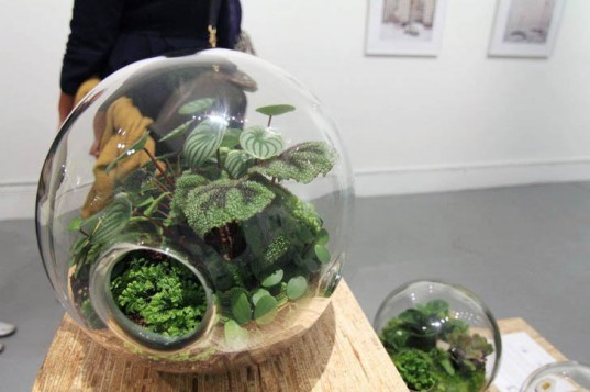 eco design, sustainable design, green design, Crooked Nest, San Francisco Bay Area, terrarium, indoor garden, hand blown glass, living walls, miniature garden