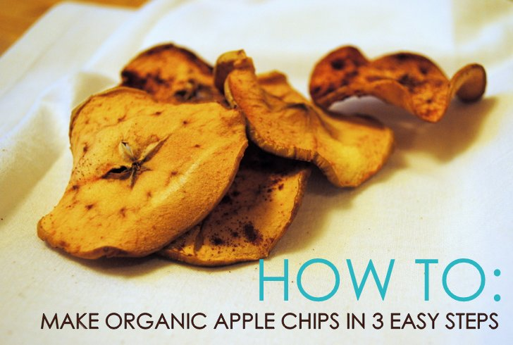 How to make organic apple chips in 3 easy steps inhabitat green environment forumfinder Choice Image