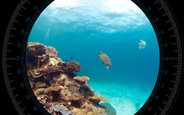 Google adds underwater panoramic sea views to study the worlds design gumiabroncs Images