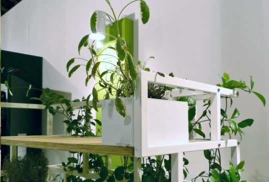London Design Fest, Nautinox, Italy, planter bookshelf, furniture