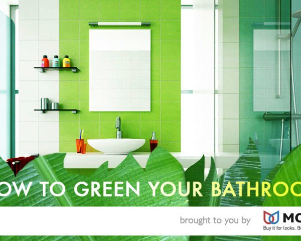 eco-friendly bath products, green your bathroom, eco-friendly bathroom, save water in the bathroom, water saving products, moen, moen motion sensor faucets, motion sensor faucets, water saving designs, eco friendly bathroom, green bathroom, aqus greywater toilet, water efficient toilet, water saving toilet, low flow toilet, low flow shower head, low flow shower, water saving shower, water efficient fixtures, home made cleaning products, change your light bulbs, eco light bulbs, energy efficient light bulbs, green lighting, LEd bulbs, led lighting, improve bathroom ventilation, reduce mold in bathroom
