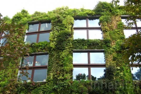 Museé du Quai Branly, Patrick Blanc, Ana Lisa Alperovich, paris, green wall, eiffel tower, green tapestry, live garden, green roof, Vertical Garden, Urban farming, Daylighting, Botanical, Green renovation, energy efficiency, Air quality, art, Architecture,