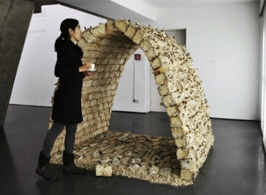 Philip Ross, mycelium, fungus furniture, Phil Ross, mushroom, mycelium building material