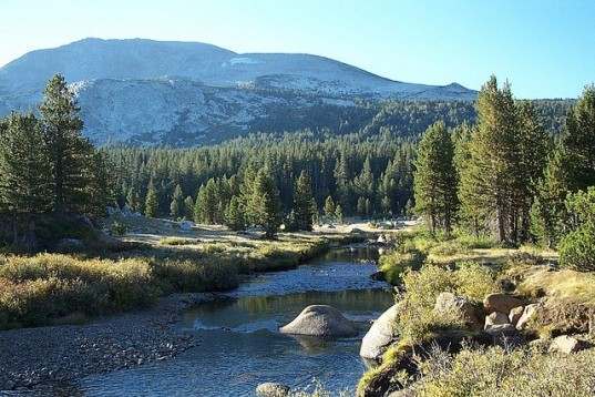 Yosemite, mountains, Sierra Nevada, High Sierras, River, Yosemite National Park