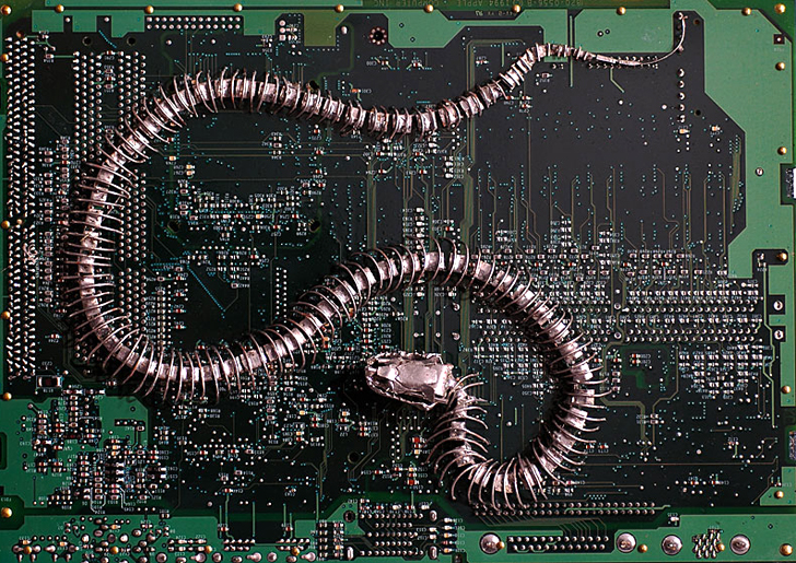 Peter McFarlane Transforms Old Circuit Boards into Gorgeous ...