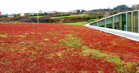 green design, eco design, sustainable design, Green roof, Coruna, Rojo Fernandez-shaw Architects, Magic Mountain Coruna, The Agora Project, Galicia
