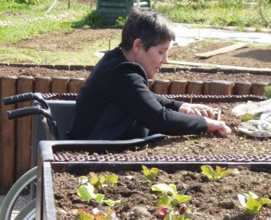 Terraform, recycling, pallets, allotments, French, wheelchair friendly, socially conscious,
