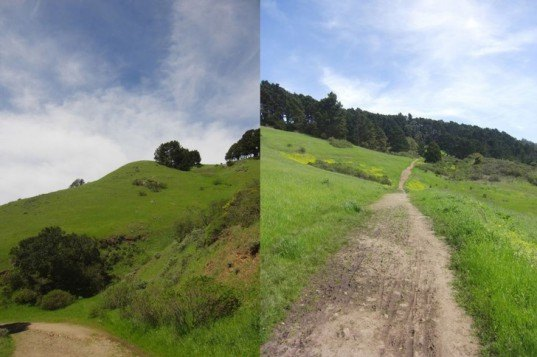 San Francisco, hikes, trails, backpacking, Mount Diablo, North Peak, Tomales Point, Point Reyes, Matt Davis Trail, Mt Tamalpais, Tilden Regional Park, Berkeley, Ring Mountain, Tiburon, Marin, Redwoods, Wilder Ranch State Park, Santa Cruz