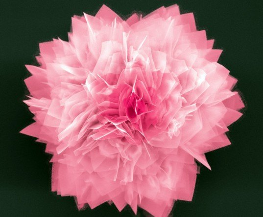 ges, nanoflower, north carolina state university, solar cell, petals