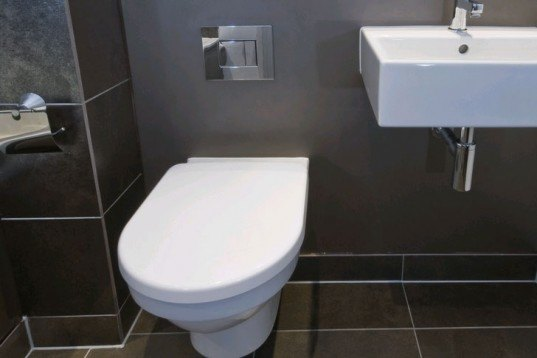 Low-Flow Toilet, water savings, water conservation, green design, eco design, sustainable design, how to save water, world water crisis, water shortage, save water