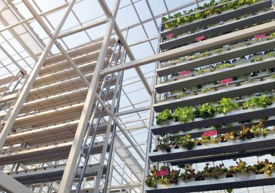 green design, eco design, sustainable design, Vertical farm, world's first commercial vertical farm, sky greens farms, Singapore vertical farm, fairprice finest supermarket