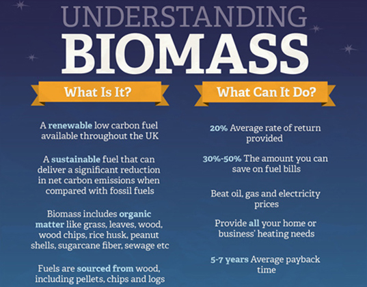 Understanding Biomass, Duncan Renewables, infographic, renewable energy, green energy, energy, sustainable design, green design, biomass, green graphics, biomass boiler, green deal, uk