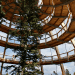 tree top, eco-tourism, eco travel, green destinations, world's longest treetop walkway, egg-shaped walkway, Germany, Bavarian Forest National Park, riskless adventure, nature, spiraling walkway, green design, sustainable design, eco design