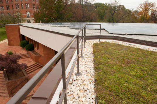Catholic University, Maryland, Washington DC, Green Roof, LiveRoof Hybrid Green Roof System, Aquinas Hall, Schick Goldstein Architects, DC Greenworks, university, roofs, stormwater, sustainable