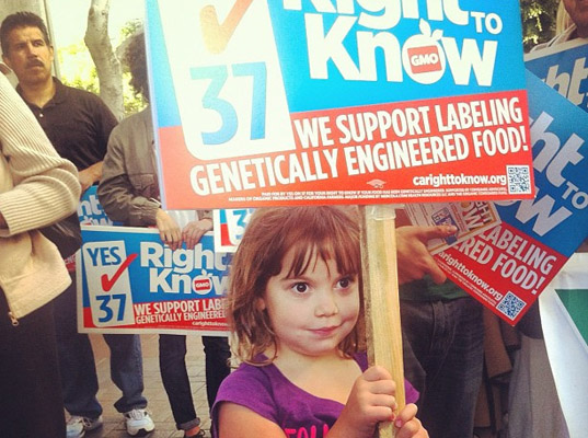 Proposition 37 California, Right to Know, GMO Labeling, Genetically Modified Organism Labeling, Monsanto, GMO legislation, Election 2012