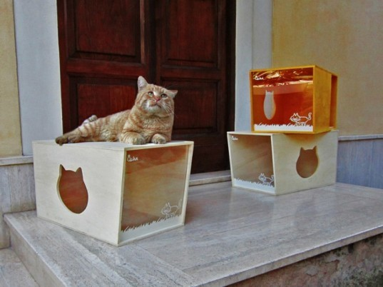 Qcha Cat Home Series, Qcha, eco-friendly cat homes, sustainable cat homes, eco-pets, green pets, green cat homes, Daniela Ogis, Stefano Ogis, Fabrizio Fillo