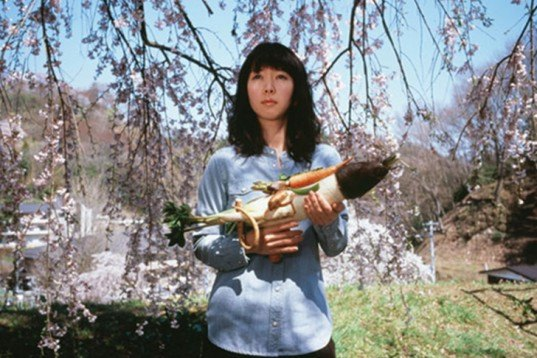 Sustainable Food, Art, Recycling / Compost, Tsuyoshi Ozawa, Vegetable Weapons, local vegetables, Japanese art