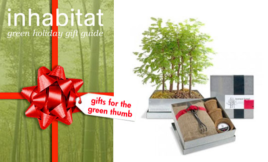 Eco Friendly Holiday Gifts For Green Thumbs! | Inhabitat   Green Design,  Innovation, Architecture, Green Building