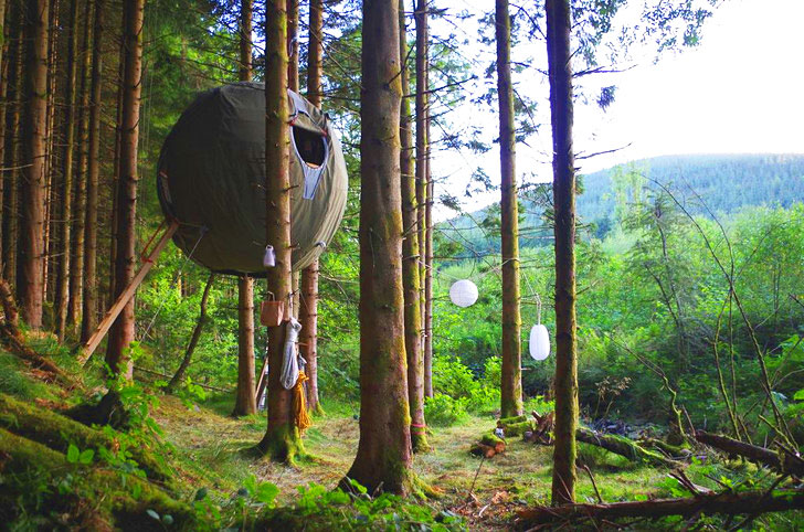 Displaying ad for 5 seconds & Luminairu0027s Spherical Tree Tents Let You Camp High Up in the ...